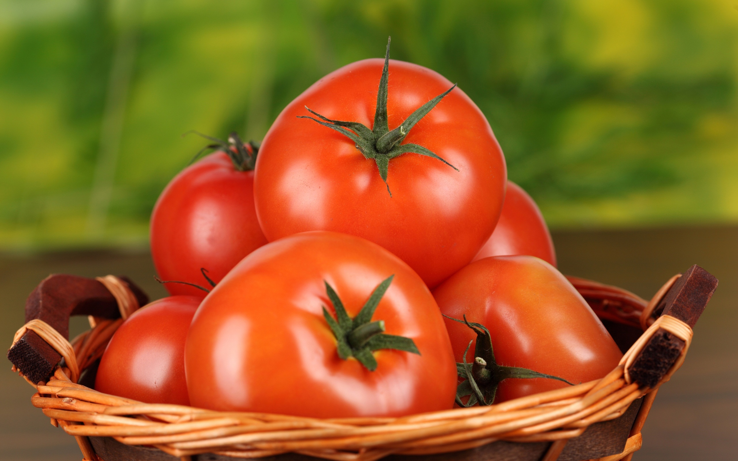 tomat merah