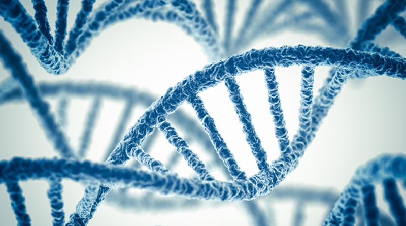 Sekuensing DNA