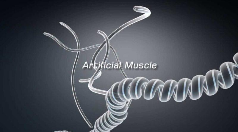 Otot Buatan yang Ringan dan Nyaman untuk Orang yang Memiliki Gangguan Mobilitas