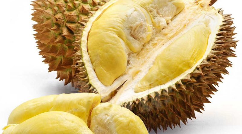 Ini Penyebab Kuatnya Aroma Durian !