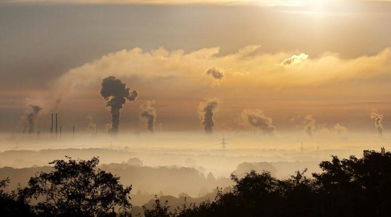 Polusi Udara Dapat Menghambat Perkembangan Otak Janin dan Kecerdasan Anak
