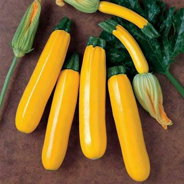 7 Makanan Ini Mampu Membuat Tubuh Terhidrasi Selama Berpuasa !
