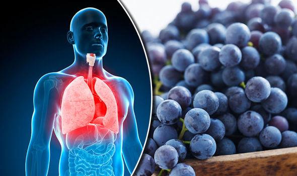 Mengapa Konsumsi Buah Anggur Dapat Optimalkan Kesehatan Paru-Paru ? Ini Penjelasannya!