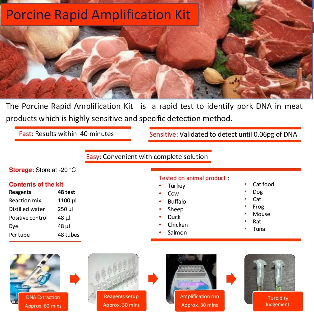 Rapid Porcine Amplification Kit